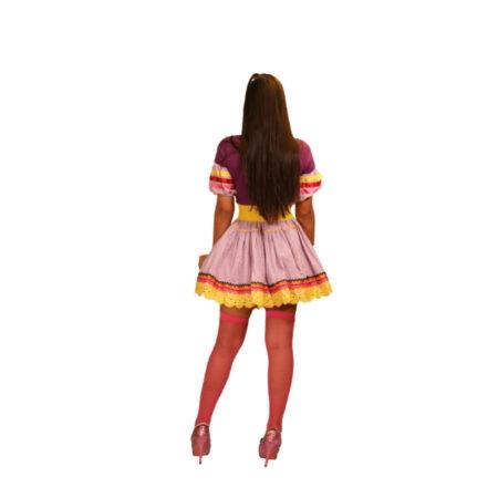 fantasia-saia-caipira-carinhosa (3)