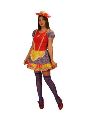 fantasia-vestido-caipira-balancê (1)