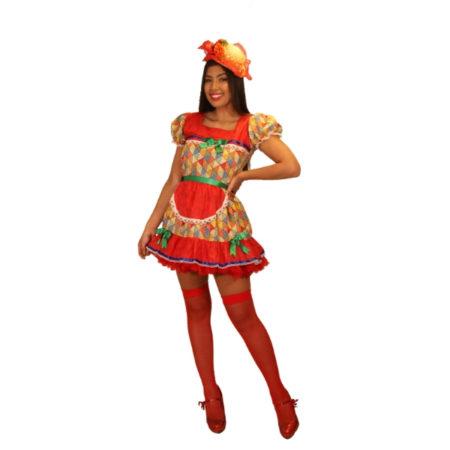 fantasia-vestido-caipira-bandeirinhas (1)