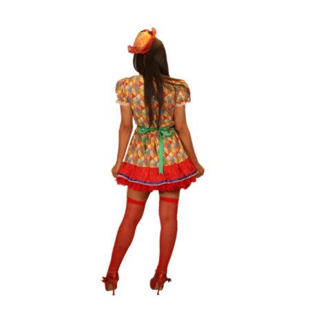 fantasia-vestido-caipira-bandeirinhas (2)
