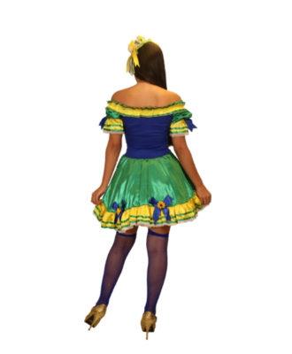 fantasia-vestido-caipira-brasil (1)