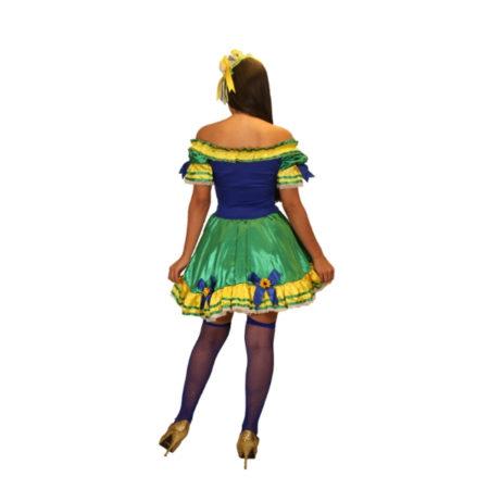 27a80aaddad3 Fantasia Vestido Caipira Brasil