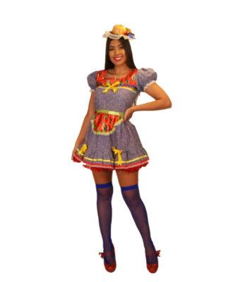 fantasia-vestido-caipira-mimosa (1)