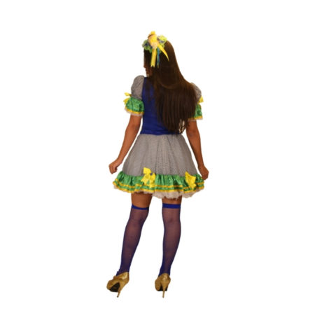 fantasia-vestido-caipira-ordem-e-progresso (1)