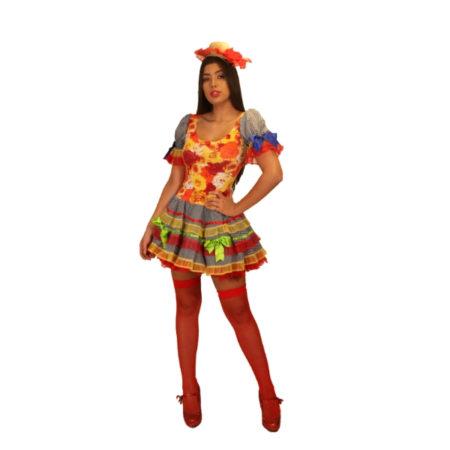 fantasia-vestido-caipira-rosinha (1)