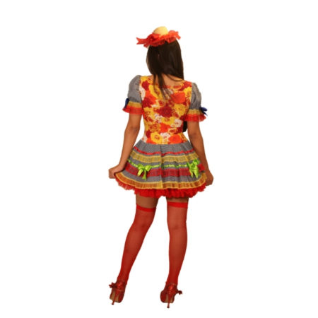 fantasia-vestido-caipira-rosinha (2)
