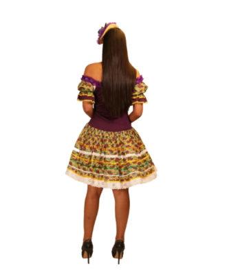 fantasia-vestido-caipira-cajuzinho (1)
