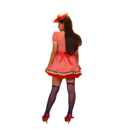 fantasia-vestido-caipira-doce-de-abobóra (1)