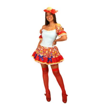 fantasia-vestido-caipira-maria-mole (1)