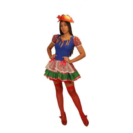 fantasia-vestido-caipira-pamonha (1)