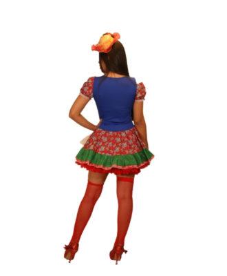 fantasia-vestido-caipira-pamonha (2)