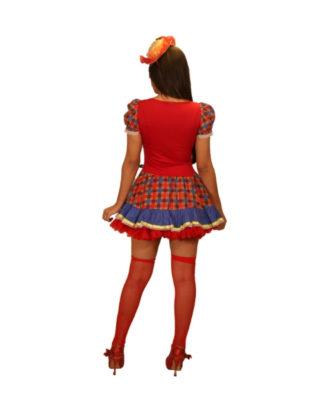 fantasia-vestido-caipira-suspiro (2)