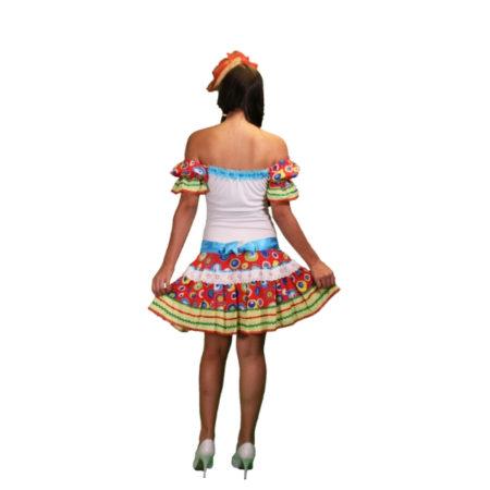 fantasia-vestido-caipira-alegria (2)