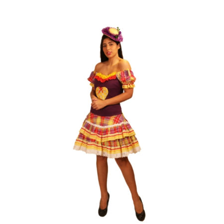 fantasia-vestido-caipira-cuzcuz (1)