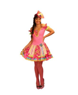 fantasia-vestido-caipira-fucsia (1)