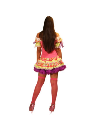 fantasia-vestido-caipira-marmelada (1)